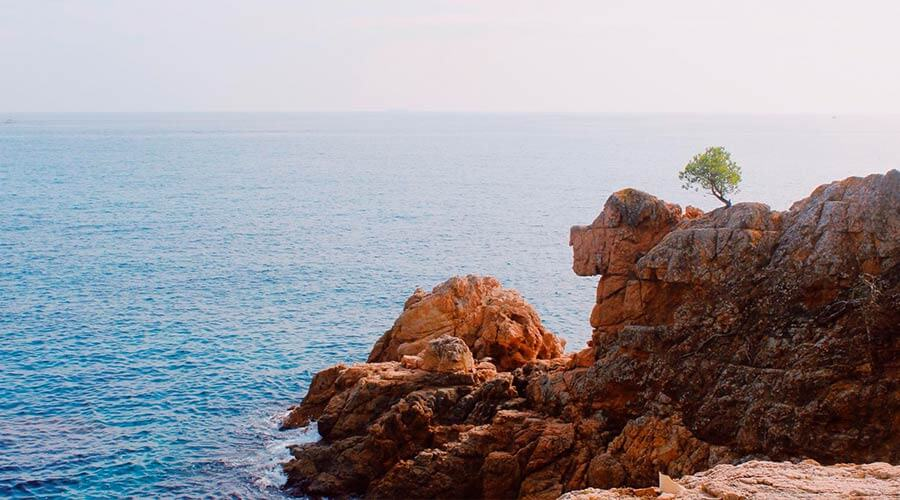 Beautiful mediterranean rocky seaside